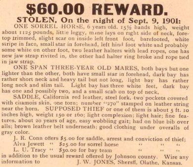 Handbill offering a reward for stolen horses in Johnson County.