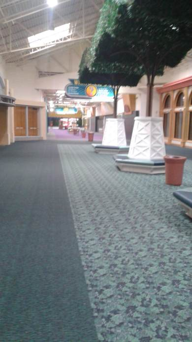 A mall hallway with green/blue patterned carpet and trees running down the center aisle.