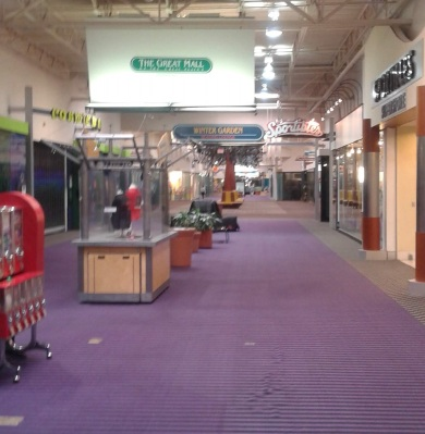A mall hallway. There are holes in the purple rug and empty kiosks and planters line the center aisle.